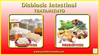 Disbiosis Intestinal