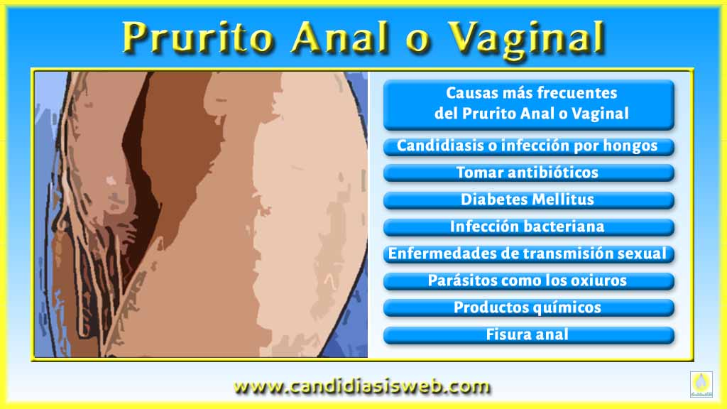 Anal And Vaginal 109